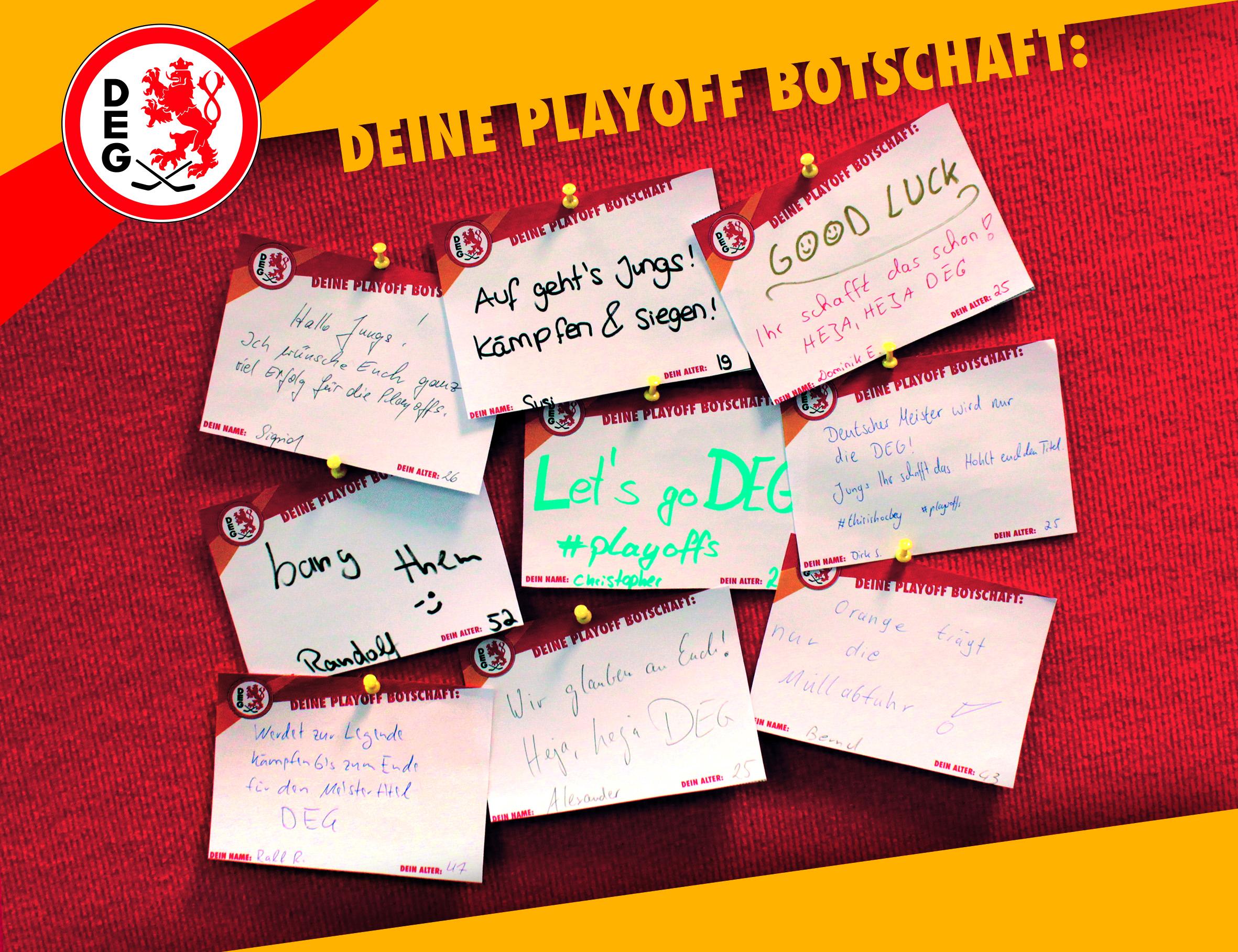 """Fan-Aktion: """"Deine Playoff-Botschaft an das Team!"""" (Foto: Düsseldorfer EG)"""