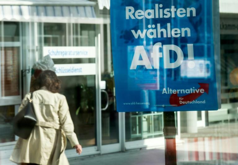 """Sogenannte """"AfD Armee Fraktion""""bedrohtabtrünnige Politiker (© 2016 AFP)"""