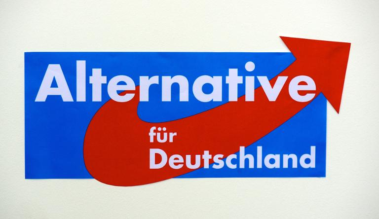 AfD-Wahlkämpfer in Schwerin wegen Körperverletzung verurteilt (© 2016 AFP)