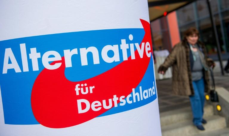 AfD erreicht Rekordhoch im ARD-Deutschlandtrend (© 2016 AFP)