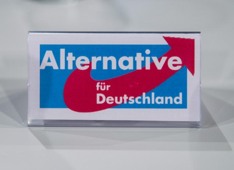 Auflösung des AfD-Landesverbandes im Saarland verzögert sich (© 2016 AFP)