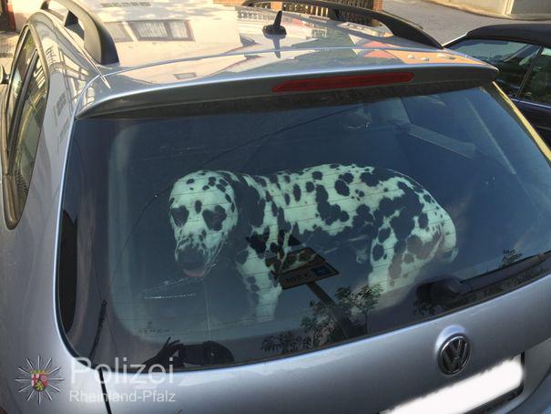 Lebensgefahr für Hunde(Foto: OTS)