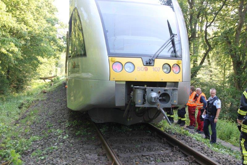 Zug mit umgestürztem  Baum kollidiert(Foto: OTS)
