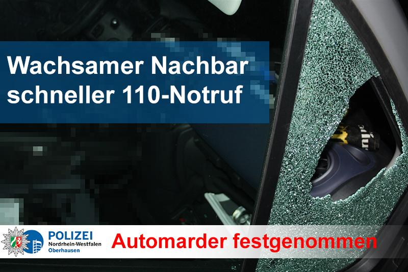 Erneut Automarder festgenommen  (Foto: OTS)
