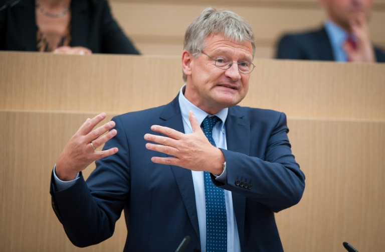 AfD-Fraktion in Stuttgart entscheidet über Gedeon - Rücktritt Meuthens möglich (© 2016 AFP)