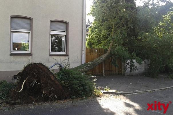 Welche Versicherung zahlt bei Sturm, Blitzschlag und Hagel? (Foto: xity)
