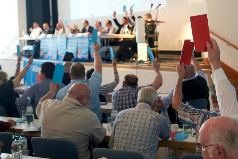 """Unions-Innenpolitiker Mayer gegen """"flächendeckende Beobachtung"""" der AfD (© 2016 AFP)"""